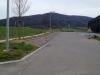 Plantation de Charmes en zone urbaine